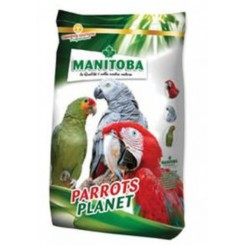 Manitoba African Parrots -...